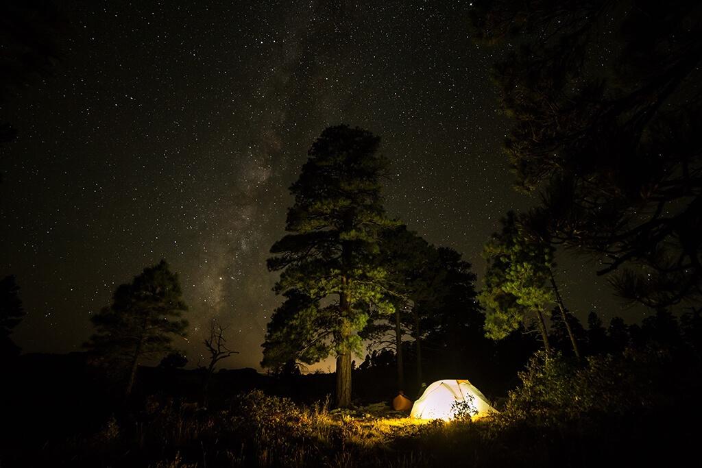 Staring at stars